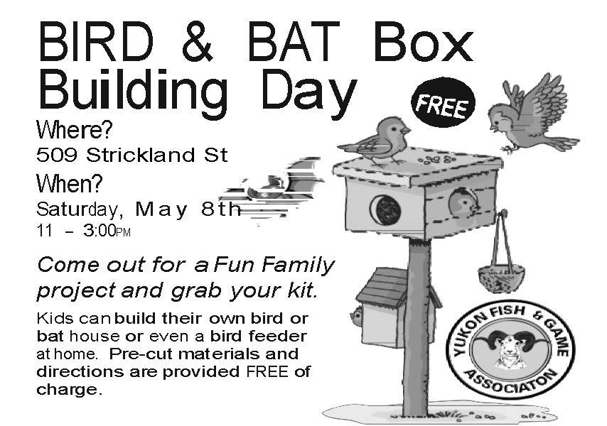 Bird & Bat Box Building Day