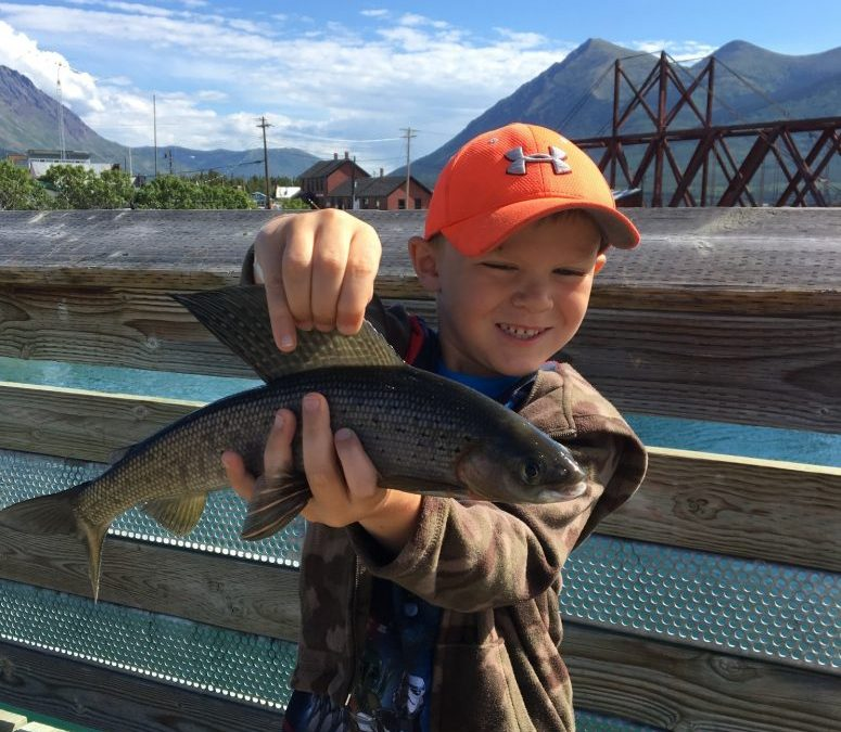 Angler and Junior Angler of the Year 2020 Submissions: